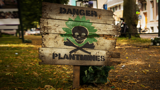 plantminesthumb2